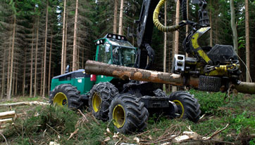 Forestry Chains